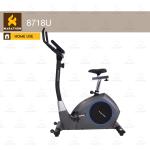Upright Bike 8718U